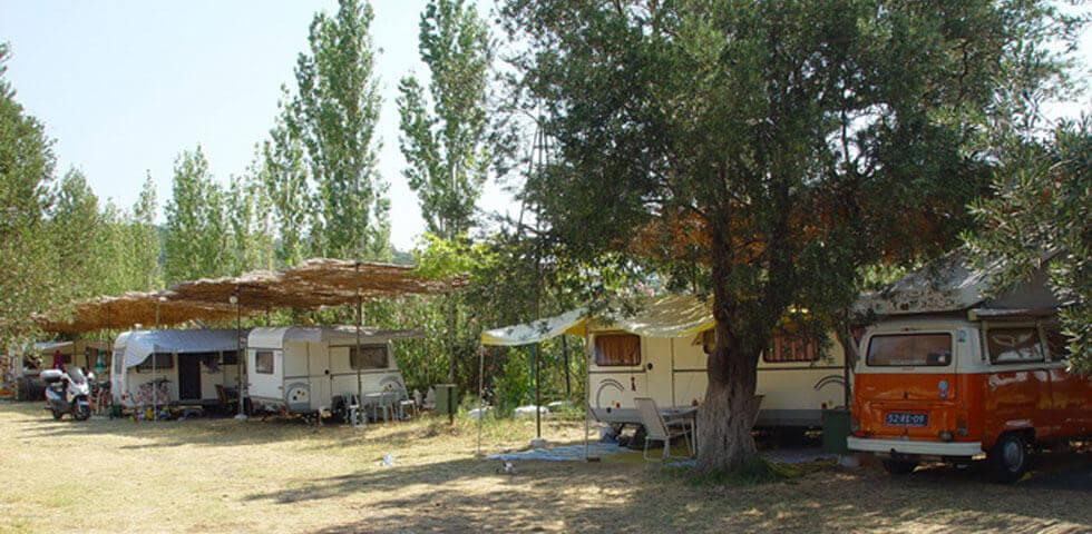 Ada Camping 2