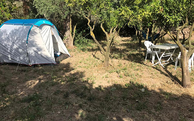 Bodrum Masali Camping 5