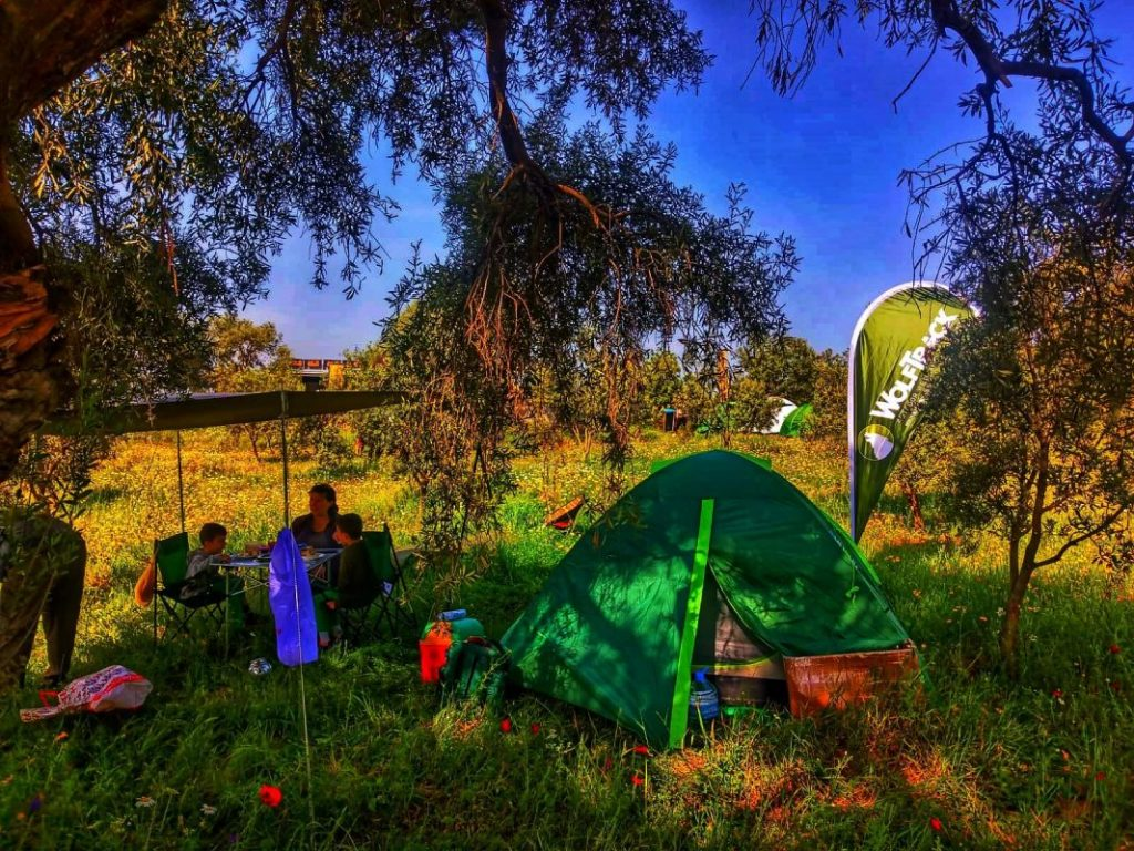 Hayal Tadinda Kamp Alani 2 1