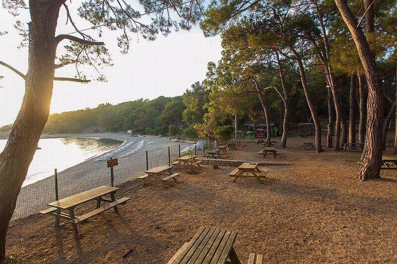 Alanya Kamp Alanları – İncekum Orman Kampı