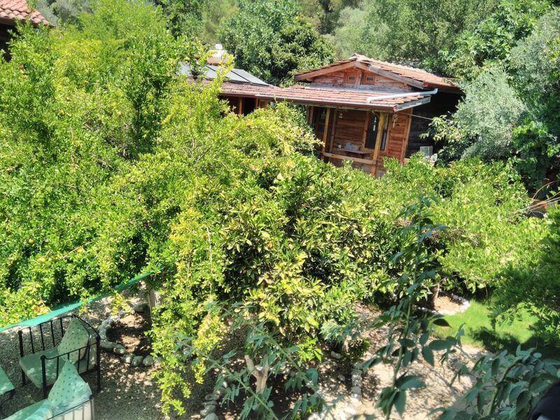 Olimpos Bungalov Evler-Baykuş Lodge