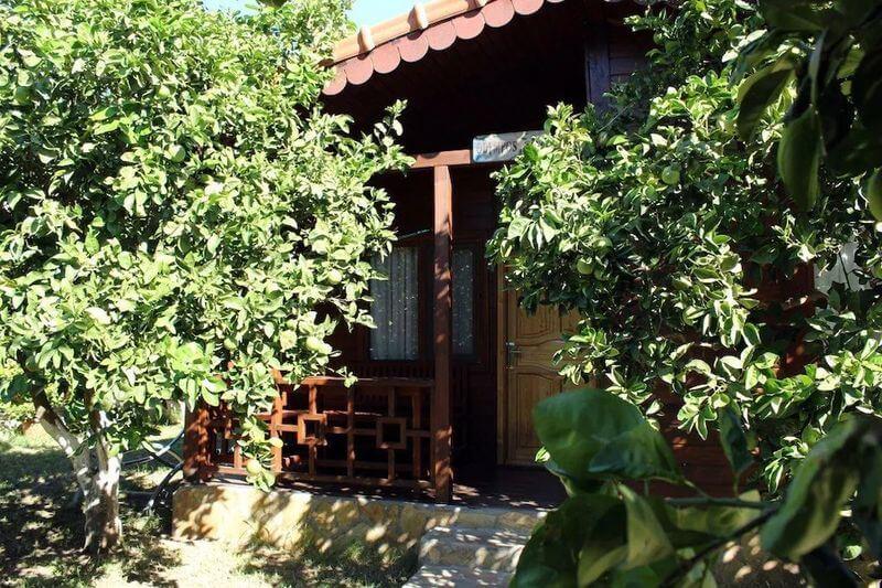Antalya Ağaç Evleri-Merhaba Hotel