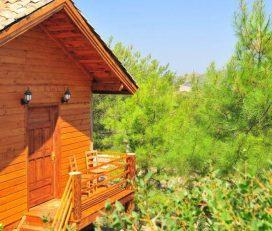 Kayserkaya Dağ Evleri ve Camping