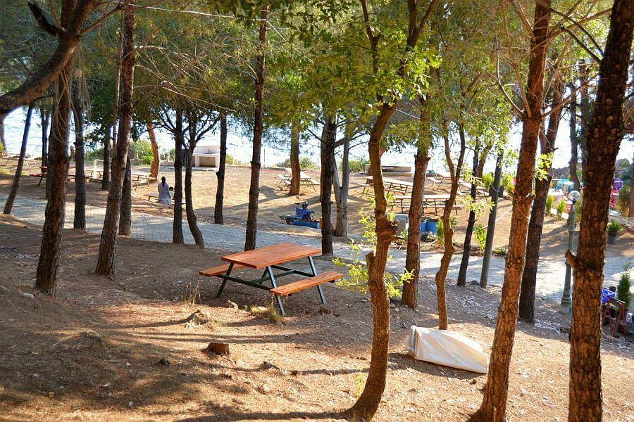 Kalemlik Orman Kampı