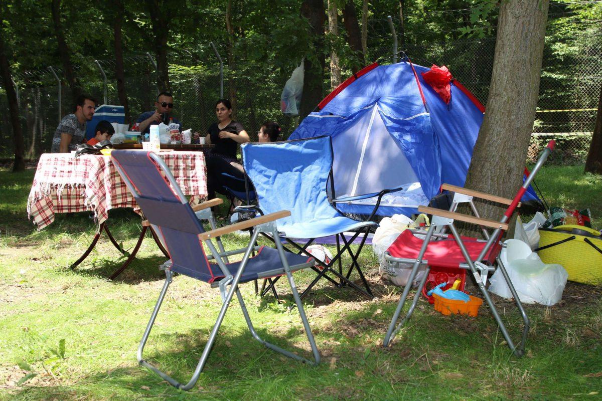 Ormanya Kamp Alanı