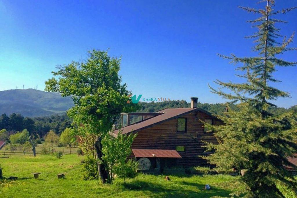 Sekoya Dağ Evi 1