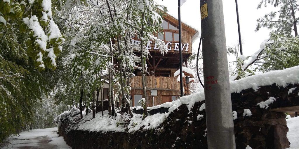 Zirve Dağ Evi 1