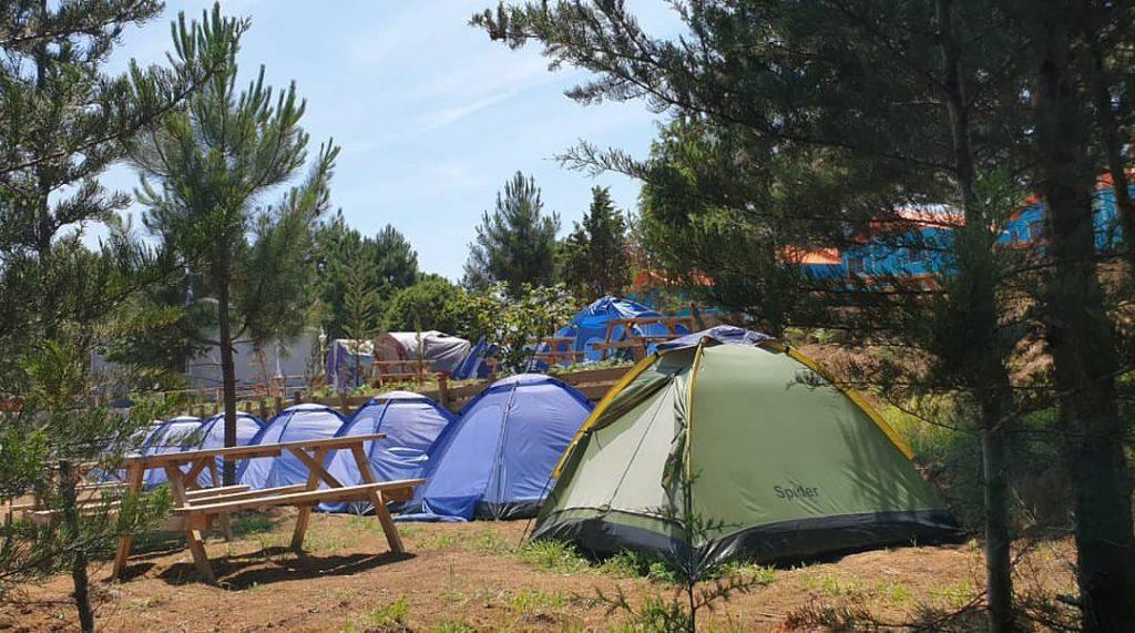 Gelesun Camping 5