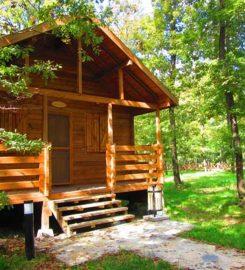 Sakarya İl Ormanı Tabiat Parkı Kampı Konaklama Evleri