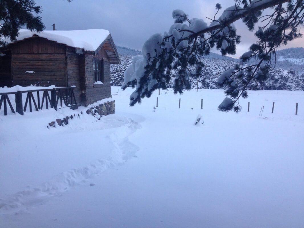 Sarıalan Dağ Evi ve Bungalov