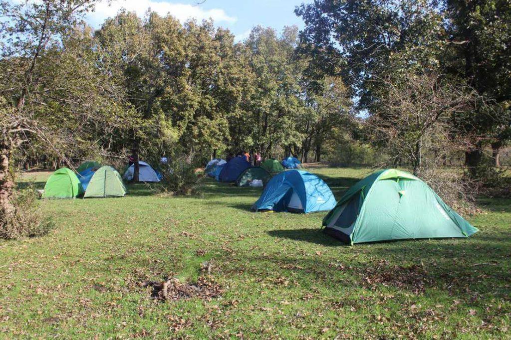 neada Kamp Alanı 1