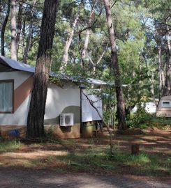 Akyaka Orman Kampı