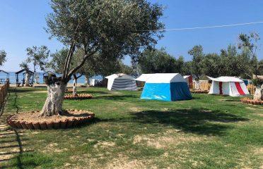 Barbaros Camping