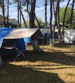 Erikli Çamlık Kamp