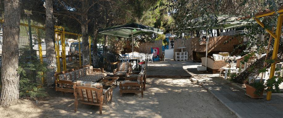 Erikli Yeşil Kamp