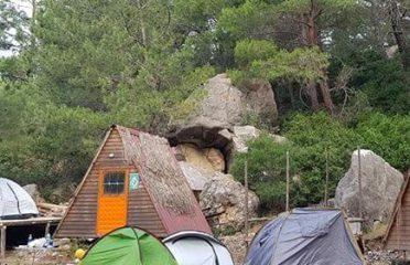 Camel Camping