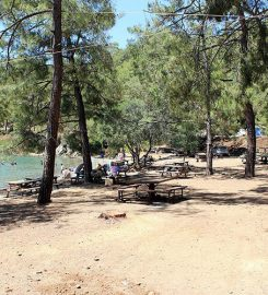 Katrancı Orman Kampı