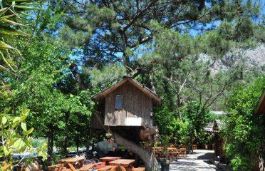 Türkmen Ağaç Evleri