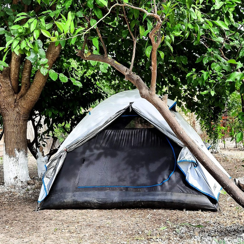 Begonvil Turkbuku Kamp Alani 3