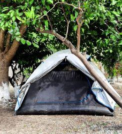 Begonvil Türkbükü Kamp Alanı