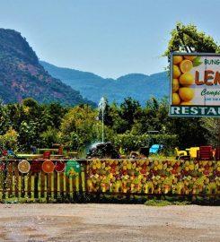Lemon Camping