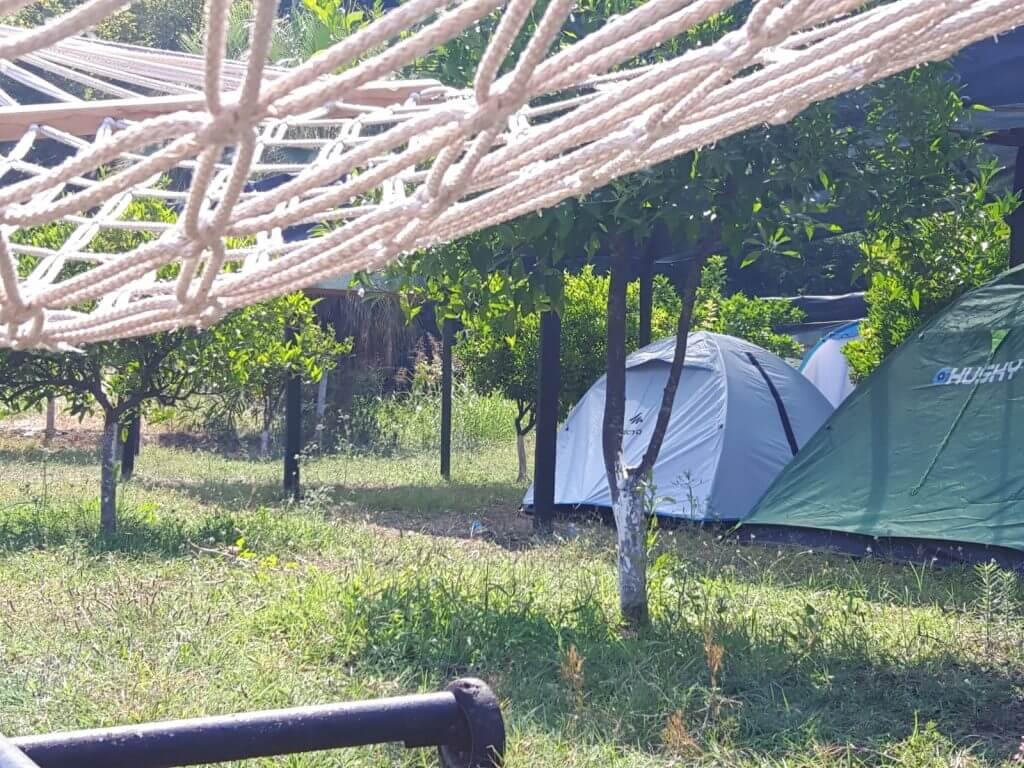 Caretta Camp
