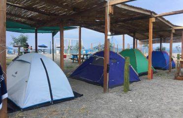 Flamingo Camping