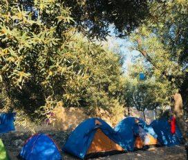 Keçi Camping
