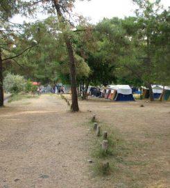 Çubucak Orman Kampı