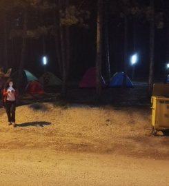 Pelitözü Yaylası Kamp Alanı