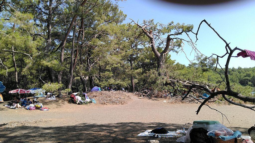 Phaselis Kamp Alanı
