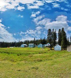 Sinekli Yaylası Kamp Alanı