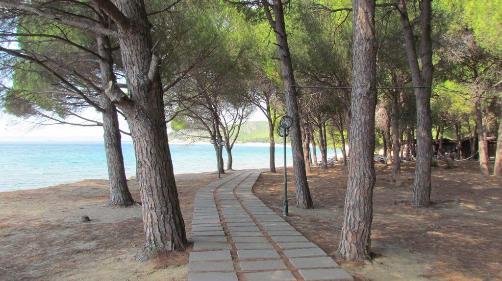 Anzak Koyu Plajı Kamp Alanı