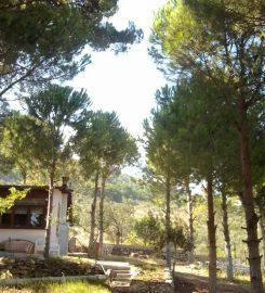 Çamlaraltı Çadır Kamp ve Restaurant