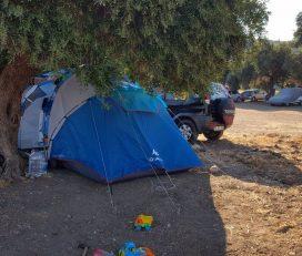 Demircili Koyu Kamp Alanı