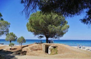 Kabatepe Plajı Kamp Alanı