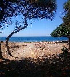 Marmaros Plajı Kamp Alanı
