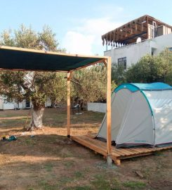 Sokakağzı Zeytin Kamp