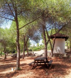 Tanay Tabiat Parkı Kamp Alanı