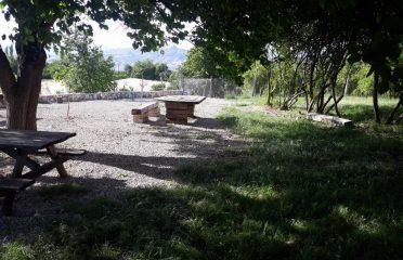 Damlacık Garden Kamping