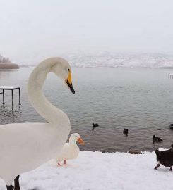 Gölbaşı Gölleri Tabiat Parkı Kamp Alanı