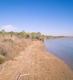 Lagünü Milli Parkı Kamp Alanı