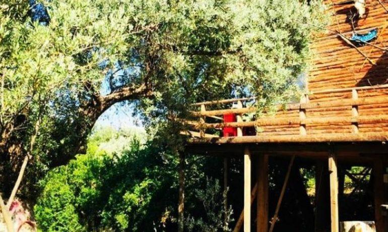 Ağaç Ev İzmir