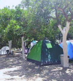 Adrasan Dere Camping