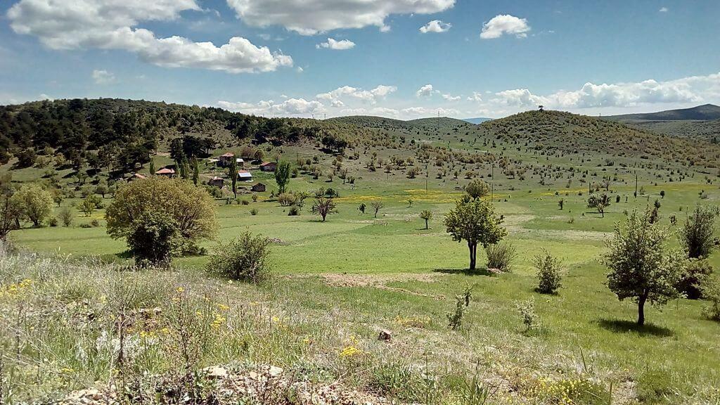 Aluçdağı Milli Parkı Kamp Alanı