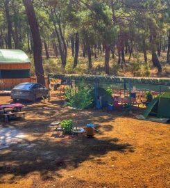 Beş Adalar Camping