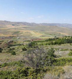 Beynam Atatürk Ormanı Kamp Alanı