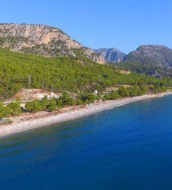 Kargıcak Plajı Kamp Alanı