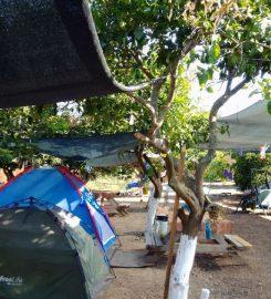 Kuzey Camping