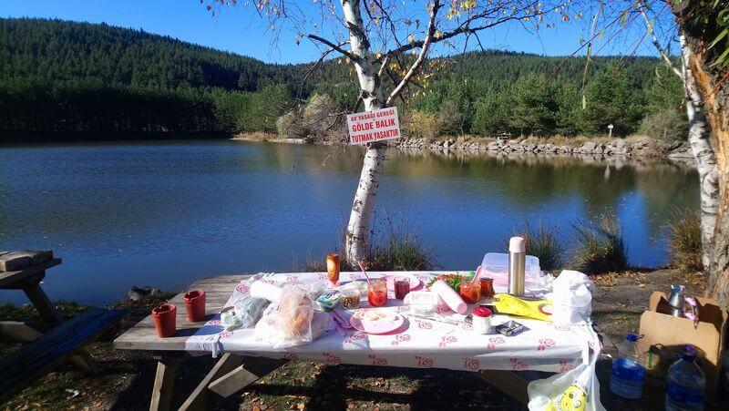 Şahinler Tabiat Parkı Kamp Alanı